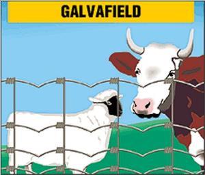 RETE GALVAFIELD  zootecnica - h140/12/15/50mt