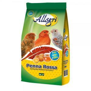 ALLEGRI - Penna ROSSA 400gr - ALLEGRI'